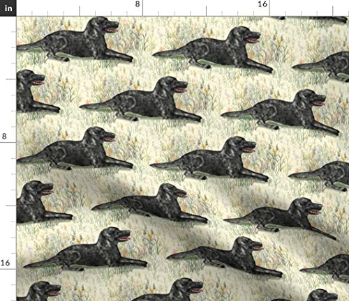 Spoonflower Landscape Fabric - Labrador Retriever Labrador Dog Cream Black Print on Fabric by The Yard - Chiffon for Sewing Fashion Apparel Dresses Home Decor