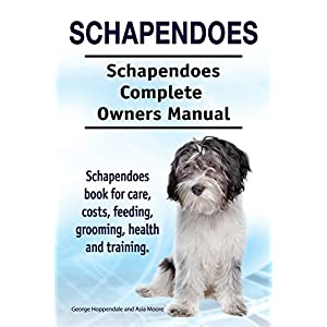 Schapendoes. Schapendoes Complete Owners Manual. Schapendoes book for care, costs, feeding, grooming, health and training. 44