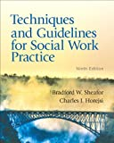 Techniques and Guidelines for Social Work Practice (9th Edition)