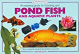 An Essential Guide to Choosing Your Pond Fish and Aquatic Plants, Graham Quick, 1902389972
