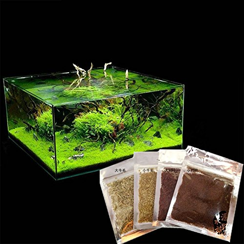 Aquarium plant seeds aquatic water grass decoration as for Aquatic decoration