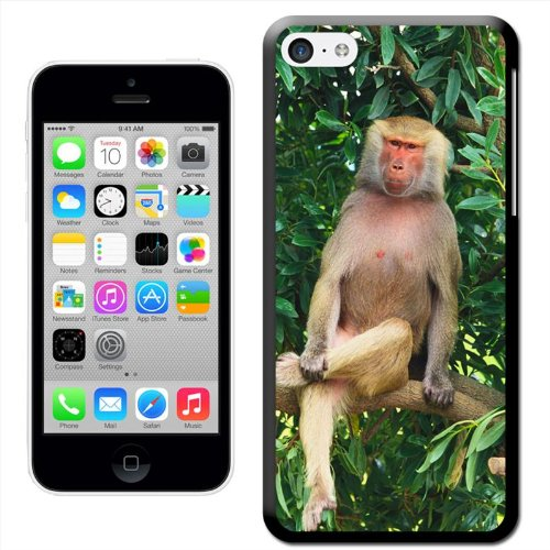 Fancy A Snuggle Coque de protection pour GPS à 10 Design 'Hamadryas Baboon Décor Coque arrière rigide à clipser pour Apple iPhone 5C