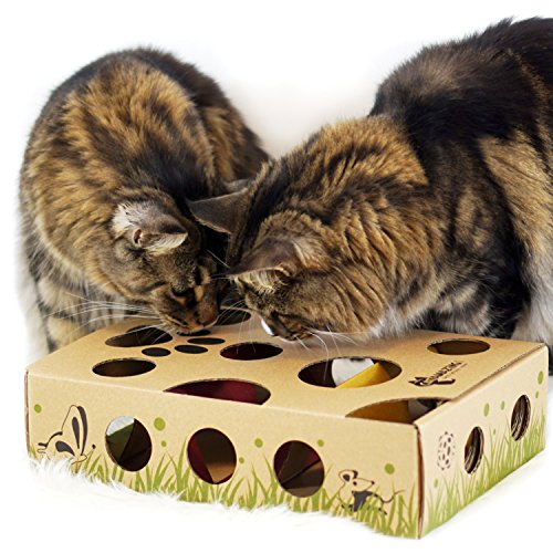 Cat Amazing – Best Cat Toy Ever! Interactive Treat Maze & Puzzle Feeder for Cats 9