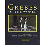 Grebes of the World
