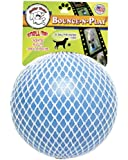 Jolly Pets Bounce-n-Play Dog Toy, Blueberry, 6 Inches