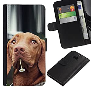 All Phone Most Case / Oferta Especial Cáscara Funda de cuero Monedero Cubierta de proteccion Caso / Wallet Case for HTC One M8 // Vizsla Dog Breed Canine Flower Cute Pet