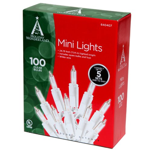 NomaInliten 100-count Clear Christmas Light Set White Wire