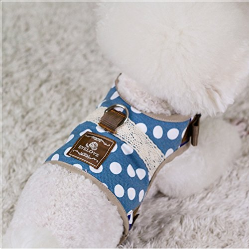 Jacket Rabbit Walking (Stock Show Dog/Cat Walking Jackets Dog Breathable Adjustable Soft Mesh Padded Harness Vest and Matching Lead Leash Set in Cute Polka Dots for Puppy Mediums Dogs Cats, Blue)