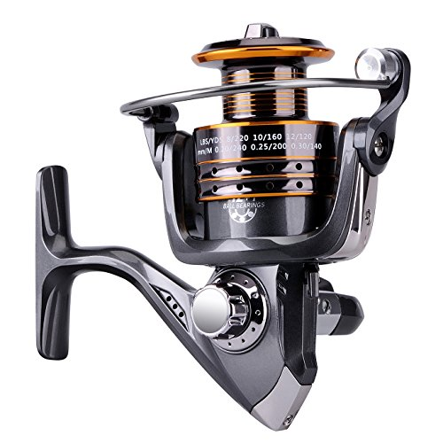 PLUSINNO HongYing Series Fishing Reels Spinning Freshwater Saltwater with 5.2:1 Gear Ratio Metal Body Left/right Interchangeable Collapsible Handle Spinning Fishing Reel(Fishing Reel) Review