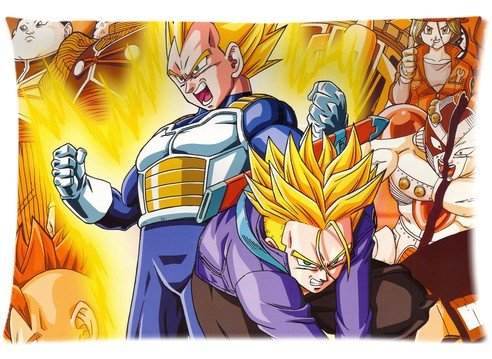 Hot Sale Japanese Anime Series Pillow Cover Dragon Ball Two Sides Diy Printed Design Custom Zippered Rectangle Pillow Case 16''x24'' 20''x30'' (16x24 inch, 0#024) - 16' Zippered Throw Pillow