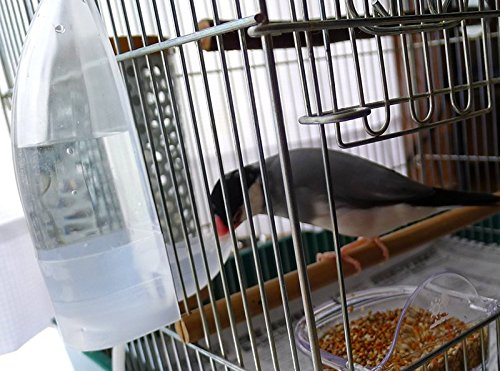 TOKYO-T Pet Bird Cage Water Bottle Dispenser Feeder for Zebra Finch Budgies Set of 2 (Clear)