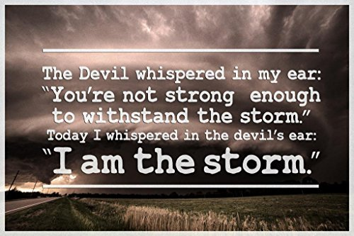 I Am The Storm Quote Motivational Poster 24x36 inch