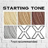 Keracolor Clenditioner Color Depositing Conditioner Colorwash, Silver, 12 fl oz