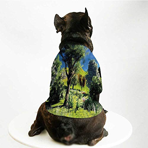 (YOLIYANA Nature Fashion Pet Suit,Rural Scenery Wilderness Forest Various Kinds of Trees Botanical Garden Image for Cats and Dogs,L)