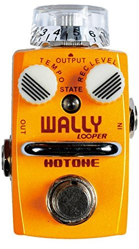 Hotone Skyline Series Wally Looper Loop Station Overdub Record Electric Guitar Bass Loop Pedal 15 Minutes Recording Unlimited Recording Looping Layers