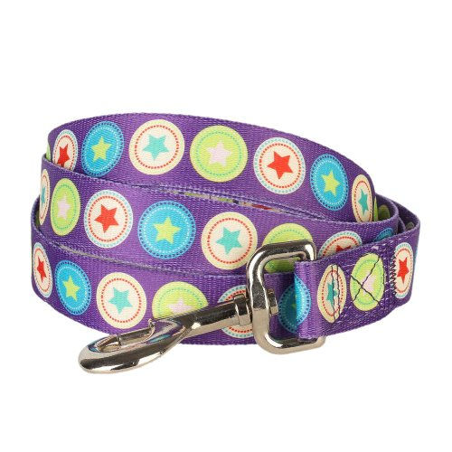 "Blueberry Pet Durable The Bold Round Star Dark Radiant Orchid Designer Basic Dog Leash 4 ft x 1"", Large, Leashes for Dogs"