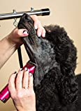 Wahl Professional Animal ARCO Cordless Pet Dog Cat