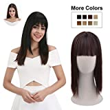 REECHO Clip in Bangs with Scalp Synthetic Straight Hair Extensions Hair Closure Piece Hairpieces 3 Clips in for Women - Dark Brown