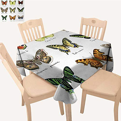 Butterfly Outdoor Picnics Watercolor Style Spring Insects Urania Helius Saturnia Pavonia Animal Design Small Square Tablecloth Multicolor W 70