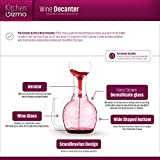 Kitchen Gizmo Wine Decanter, Aerator and Wine Glass
