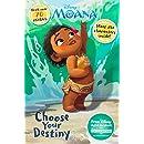 Disney Moana Choose Your Destiny (Meet the Characters)