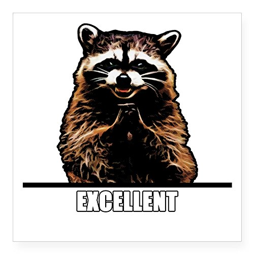 (CafePress Evil Raccoon Sticker Square Bumper Sticker Car Decal, 3