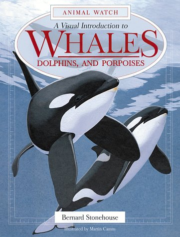 A Visual Introduction to Whales, Dolphins and Porpoises (Animal Watch Series)