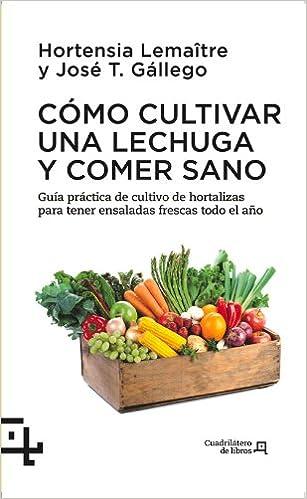 Cómo cultivar una lechuga y comer sano: Guía práctica de cultivo ...