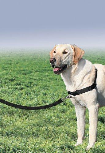 PetSafe Easy Walk Dog Harness, No Pull Dog Harness, Black/Silver, Large