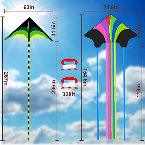 GoosWexmzl 2 Pack Kites - Large Kites for Kids Easy to Fly, Rainbow Delta Beach Kites with Long Tail Huge Flyer , Great Outdoor Activities Beach Games for Kids