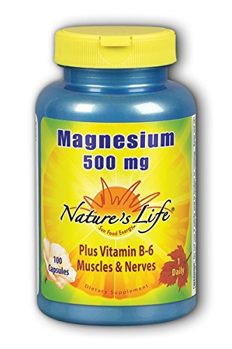 Nature's Life Magnesium Capsules, 500 Mg, 100 Count
