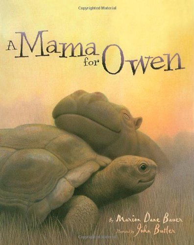 A Mama for Owen (Rise and Shine)