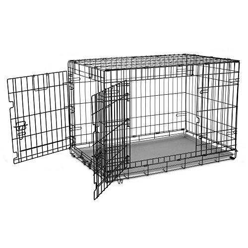 You & Me 2-Door Folding Dog Crate, 36