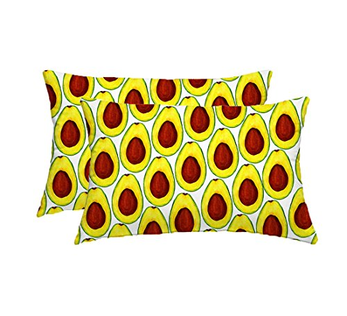 Tyler Wolf Gunter Food avocados Outdoor Accent Pillow 19x12 inch (set of 2)