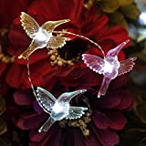 Festive Fairy String Lights, Impress Life Summer Hummingbird Flexible Copper Wire 10 ft 40 LEDs with Remote for Covered Outdoor, Indoor, Wedding, Spring, Porch, Garden, Birthday Party Home Decorations