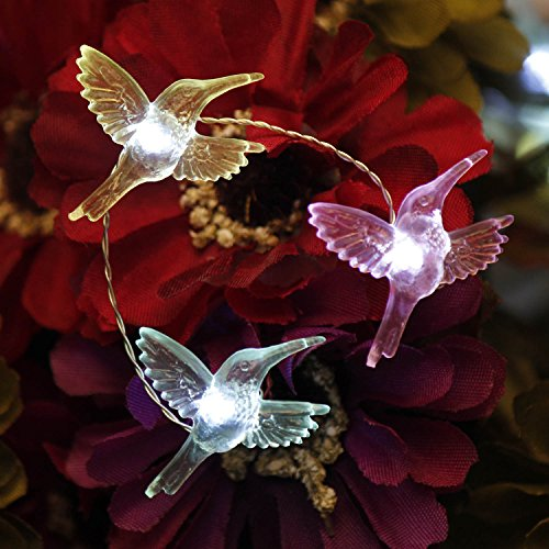 Impress Life Festive Fairy String Lights, Hummingbird Flexible Copper Wire 10 ft 40 LEDs with Remote for Bird Lover, Wedding, Spring, Garden, Birthday Party Home Decorations