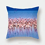 Custom Satin Pillowcase Protector Pink Flamingo Flock Of Flamingos On The Lake Africa Birds Of Africa 630834596 Pillow Case Covers Decorative