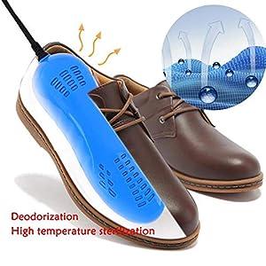 Portable Shoe Dryer