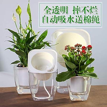 Ironhorse Juego de 12 macetas hidropónicas para cultivo de plantas con forma de canasta de esponja, cuerda de absorción de agua, herramienta para plantar