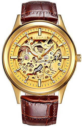 PASOY Men's Automatic Mechanical Watch Sapphire Glass Luminous Hands Gold Steel Leather Skeleton Watches by PASOY