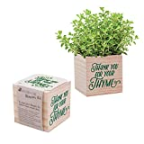 "Desk Accessory for The Office - Thyme Plant Seed Packet, Peat Pellet, and Natural Pine Wooden 3x3 inch Cube Planter - Employee Appreciation Gift -""Thank You for Your Thyme"""