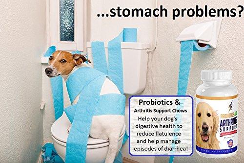 health Kick keep nearly all beneficial Probiotics Probiotics