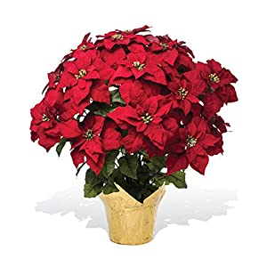 PETALS – Extra Large Premier Silk Poinsettia – Handcrafted – Amazingly Lifelike – 34 x 26 Inches (Red)