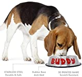 GPET Personalized Dog Bowl –Customizable Pet Name 3D Print Design 32 Oz Stainless Steel Bowls with Anti-Skid Rubber Base for Food or Water Perfect Dish for Dog Puppy Cat and Kitten