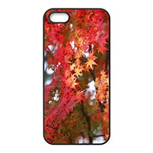 YCHZH Phone case Of Maple Cover Case For iPhone 5,5S