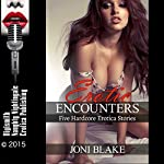 Erotic Encounters: Five Hardcore Erotica Stories | Joni Blake