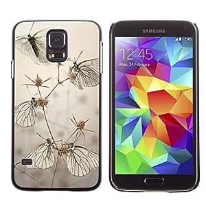 PC/Aluminum Funda Carcasa protectora para Samsung Galaxy S5 SM-G900 Butterfly Field Grey Summer Nature / JUSTGO PHONE PROTECTOR