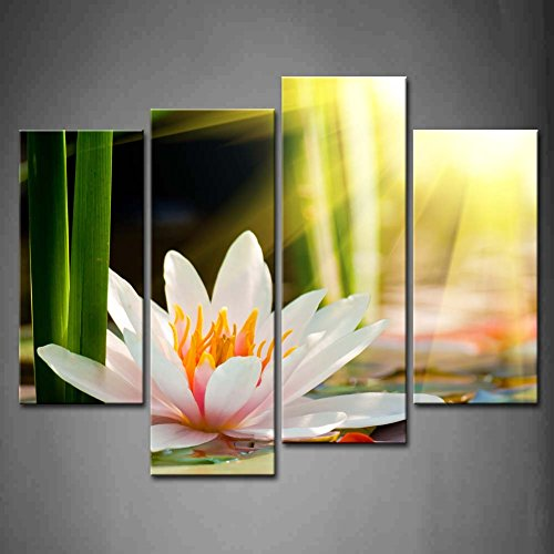 First Wall Art - 4 Panel Wall Art Beautiful Water Lily Sunshine Painting The Picture Print On