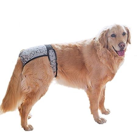 Pañales para Perros pequeños,Pañal Reutilizable, Lavable y ...