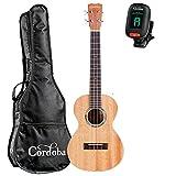 Cordoba 15TM Tenor Ukulele Natural GuitarVault Kit with Cordoba Gig Bag and Clip-On Tuner